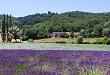 Domaine de Fonteyrol Vacation rental Rochefort-en-Valdaine
